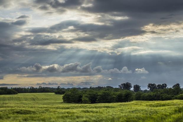 MRiRW: O sprzedaży ziemi rolnej – co zakłada projekt ustawy?