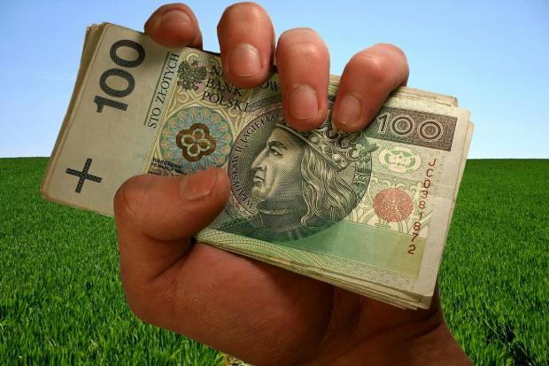 ARiMR: Dopłaty najpóźniej w maju