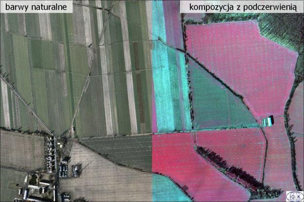 ASAP: Ocena przezimowania upraw na podstawie zdjęć lotniczych