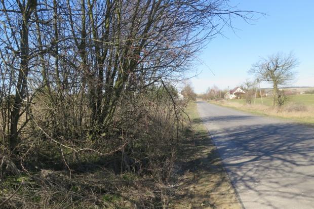 Nowe zasady sprzedaży ziemi uwzględniają interes Polski i polskich rolników