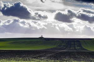Nabywca ziemi rolnej nie będzie musiał należeć do KRUS
