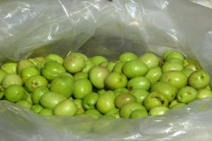 UE: Zakwestionowano rekordową ilość sfałszowanej żywności