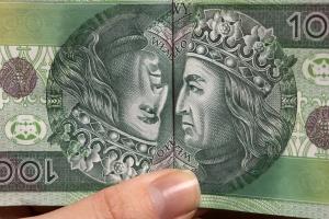 Dopłaty bezpośrednie mogą być płacone w ratach