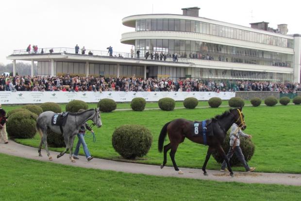 Czy wyścigi mogą sfinansować hodowlę koni?