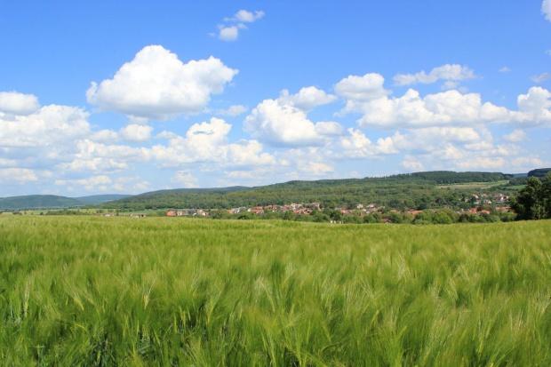 Ustawa regulująca sprzedaż ziemi przyjęta