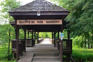 Białowieski Park Narodowy nie wydzierżawi od rolników łąk dla żubrów
