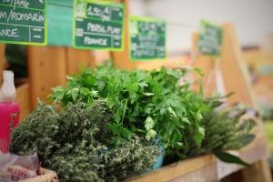 Rośnie rynek produktów ekologicznych w UE