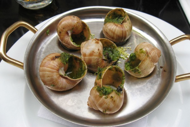 Ślimakami hodowanymi pod Pasłękiem zajadają się Francuzi, Włosi i Hiszpanie