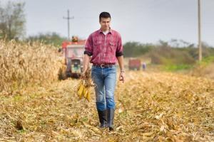 Prawie 3 tys. osób stara się o premie dla młodych rolników