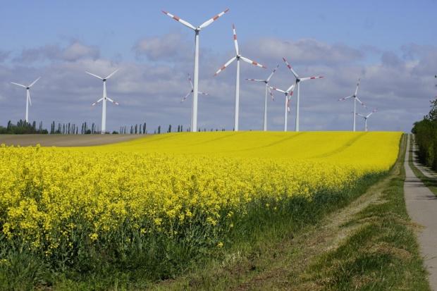 NIK o nieprawidłowościach dotyczących lokalizacji wiatraków