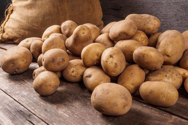 Odwrót od naszych ziemniaków