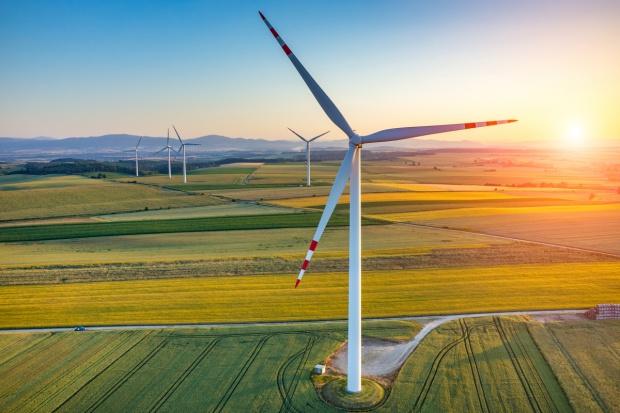 Ekspert WWF o projekcie o OZE: To prawo dla dużych państwowych koncernów energetycznych