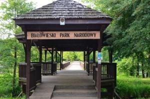 Olimpia Pabian nowym dyrektorem Białowieskiego Parku Narodowego