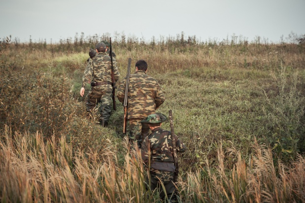 Szkody łowieckie a polowania