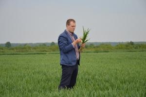 Wspólnie zlustrujmy uprawy w Pawłowicach