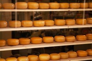 Rosja znów importuje więcej sera