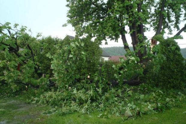 PSP: W środę w związku z burzami strażacy interweniowali blisko 800 razy