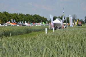 Wielkopolskie Targi Rolnicze – Sielinko 2016