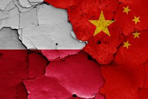 Produkty rolne i inwestycje infrastrukturalne – perspektywiczne obszary współpracy z Chinami