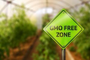 W MRiRW rozpoczęto prace nad systemem znakowania produktów wolnych od GMO