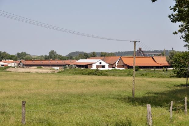 Kukiz'15 chce ułatwień dla rolników w prowadzeniu działalności pozarolniczej