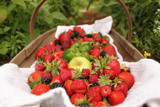 Jabłka i wiśnie z Polski, brzoskwinie i truskawki z Hiszpanii