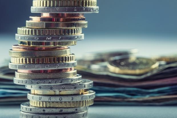 MRiRW: W UE powinna być jedna stawka dopłat bezpośrednich - 260 euro na ha