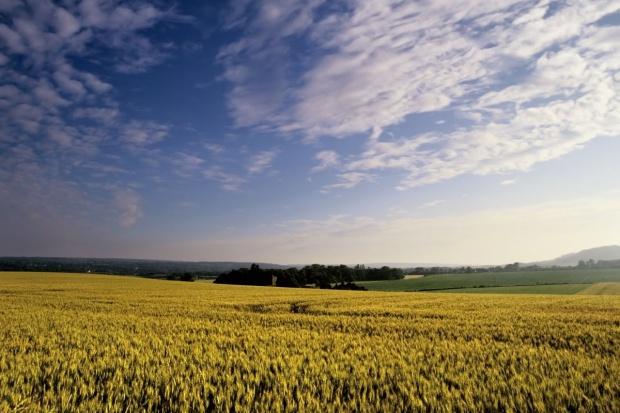 Sejm znowelizował przepisy dotyczące obrotu ziemią rolną