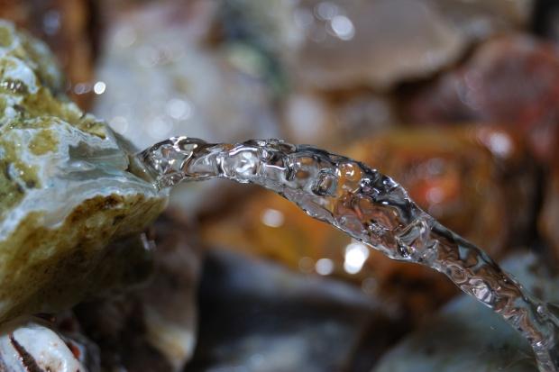 70 proc. wody w Polsce zużywa energetyka węglowa, a co z rolnictwem?