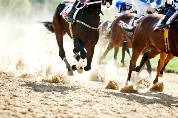 MRiRW: Do 1 sierpnia można zgłaszać kandydatów do rady wyścigów konnych