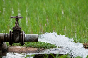 Zmniejszono proponowane stawki opłaty za wodę dla rolników