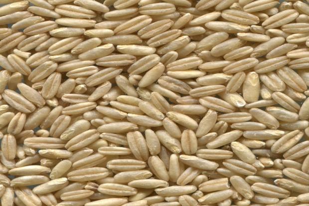 Giełdy krajowe – zmalało zainteresowanie zakupem zbóż
