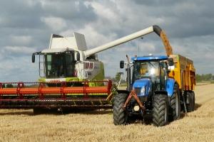 Rekordowe zbiory pszenicy w Bułgarii