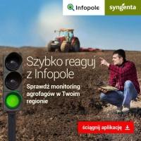 Dzięki Infopole dowiesz się jakie szkodniki zatakują jesienią