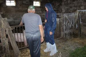 KRIR apeluje o współpracę rolników ze służbami weterynaryjnymi