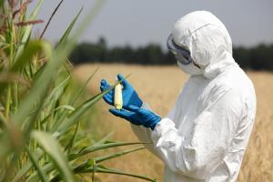 MRiRW: Do końca roku ustawy powołujące jedną inspekcję bezpieczeństwa żywności
