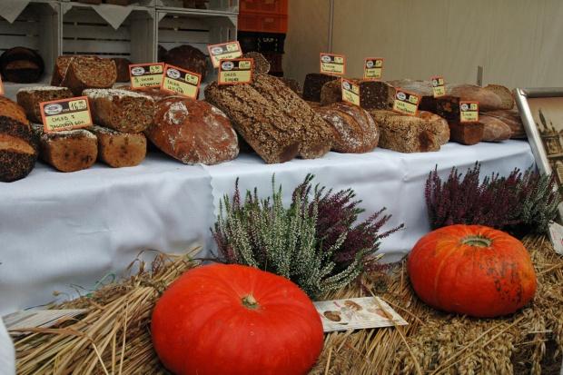 XIV Warszawskie Święto Chleba 2016 (galeria zdjęć)