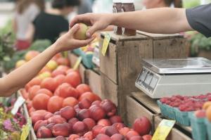 CETA coraz bliżej. Umowa z Kanadą ułatwi import taniego mięsa