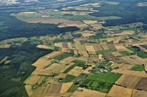 MRiRW: Strategia na rzecz Odpowiedzialnego Rozwoju będzie uwzględniała rozwój wsi