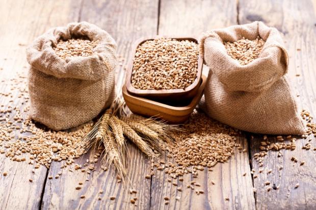 Przed raportem USDA większość zbóż podrożała