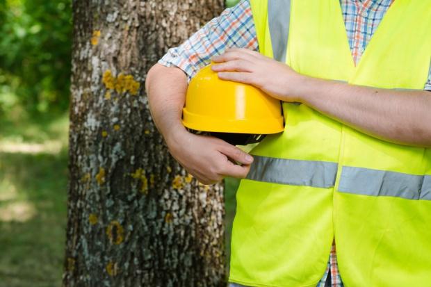 Podkarpackie: Leśnicy zabezpieczają stare studnie