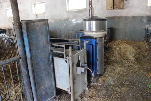 Krovital – nowa marka preparatów mlekozastępczych dla cieląt