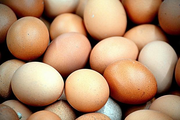 MRiRW: Jaja zakażone salmonellą pochodzą z Wielkopolski