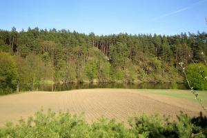 Rolnictwo zrównoważone to nie tylko dodatkowe dopłaty