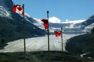 Rolnictwo w Kanadzie to wielka przestrzeń i wymagający klimat