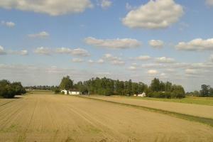 Pogłębia się regionalne zróżnicowanie rolnictwa w Polsce