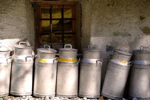 Rosja: Pierwszy od lat spadek konsumpcji produktów mleczarskich