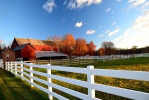 Jak ubezpieczyć gospodarstwo rolne - najczęściej zadawane pytania