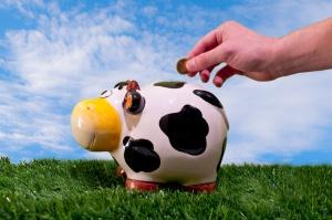 Pomoc dla rolników zadłużonych i producentów mleka wciąż niepewna i niejasna