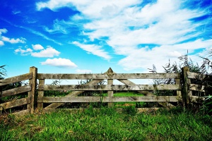 Czy będą zmiany w zasadach sprzedaży ziemi?